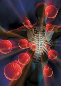 תמונה - כירופרקטיקה מטפלת בכאב גב